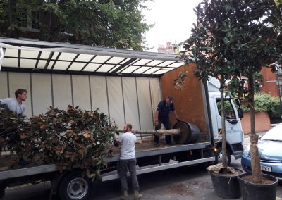 three men removing large tree from truck