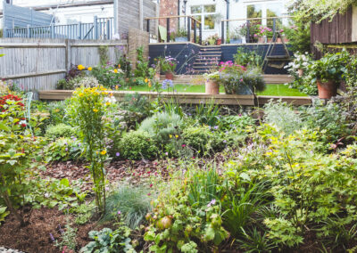 plant beds in terraced garden with raised decking