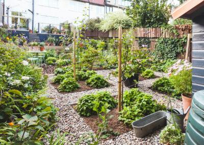 terraced garden with raised decking