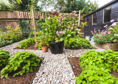 modern garden with pebbled walkway