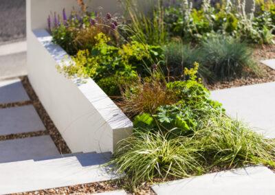 low maintenance plants in gravel in front garden