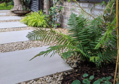 ferns and plants along gravel path with grey slabs