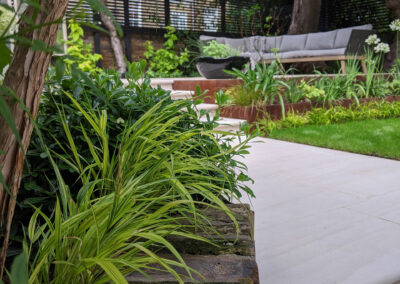 ferns and grasses in planter boxes along wide steps in contemporary garden