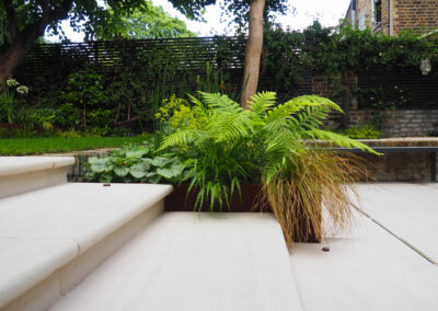 Large ferns in planter box in contemporary garden