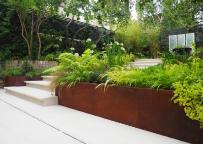 Planter beds with foliage in contemporary garden