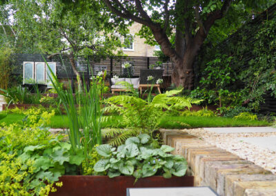 garden with plants, outdoor furniture and large tree in contemporary garden