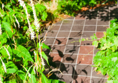 hand cut quarry tiles flanked by plants
