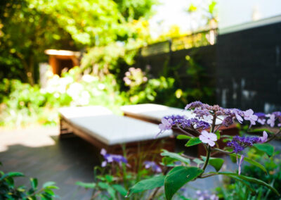 Two benches and plants in a new contemporary garden